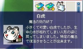 f0053927_621533.jpg