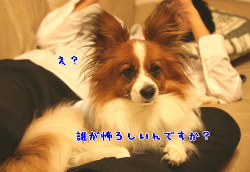 d0013149_1304470.jpg