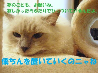 f0014893_13421627.jpg