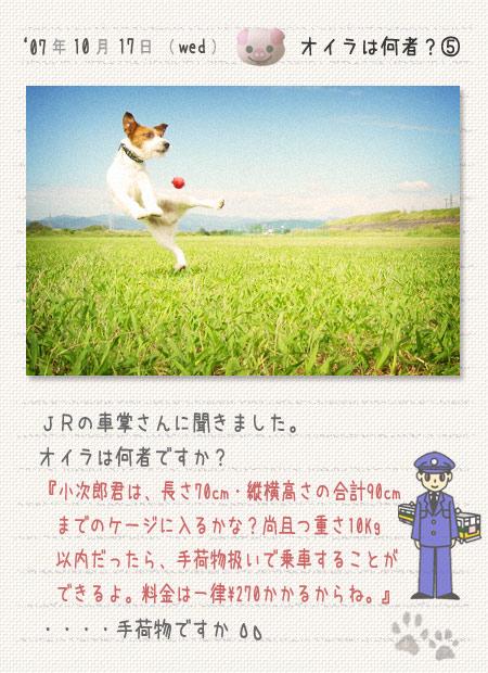 b0040323_3304659.jpg