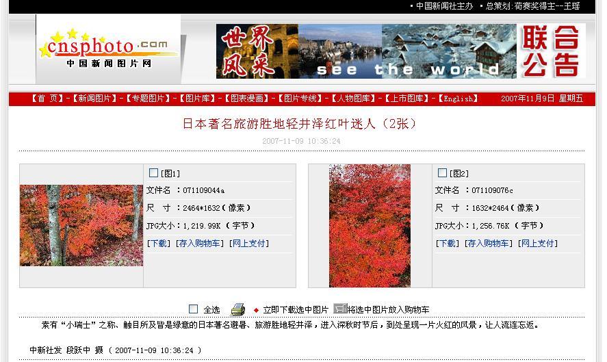日本著名旅游胜地轻井泽红叶迷人_d0027795_12202920.jpg