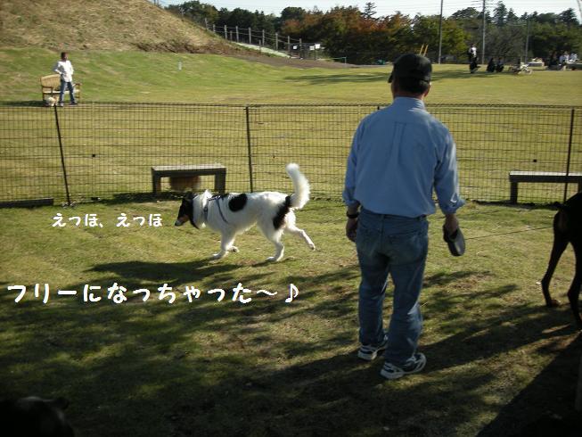 f0081100_1417407.jpg