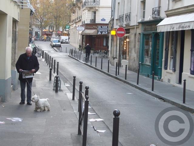 ■街角のワンコたち(パリ)_a0008105_894382.jpg