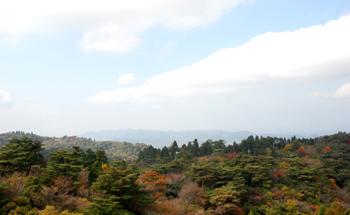 秋の眺め_e0103024_20525640.jpg