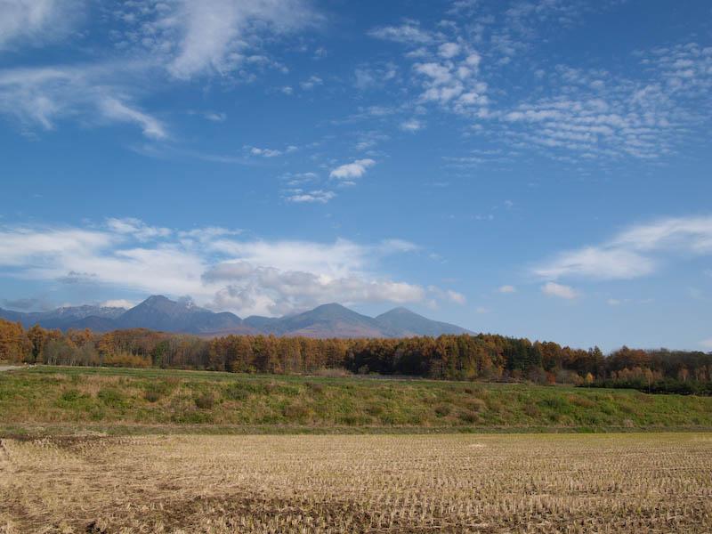 秋たけなわの富士見高原と原村_c0137403_18101130.jpg