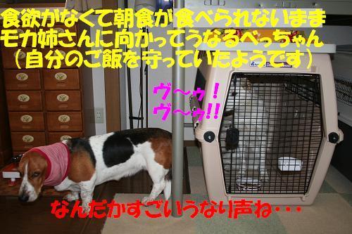 f0121712_16253780.jpg