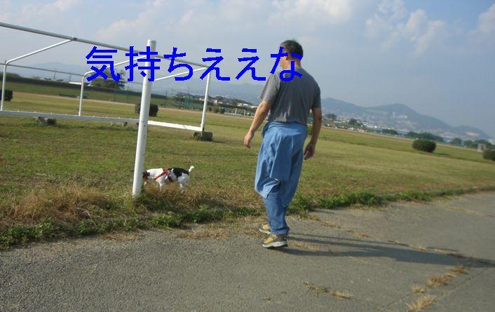 f0053952_20281132.jpg