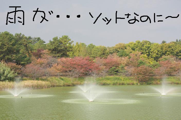 f0032275_1943171.jpg