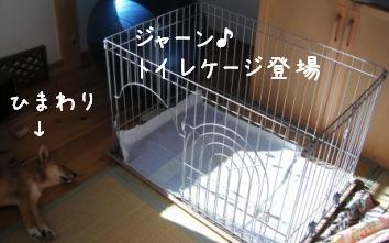 f0068501_11145271.jpg