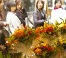 パリお花ツアー報告VOL6 ~フラワーブティック巡り前編~_b0111306_22491562.jpg