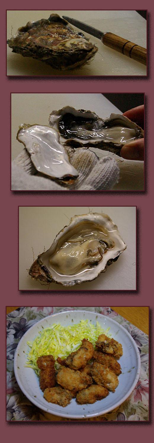 殻つき牡蠣_b0019313_1824623.jpg