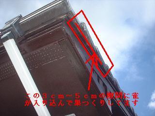 f0031037_16144099.jpg