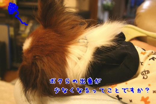 d0013149_0501044.jpg