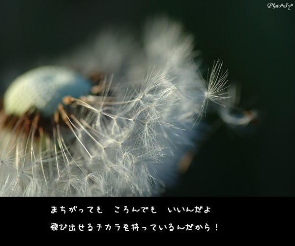 c0144353_11591215.jpg