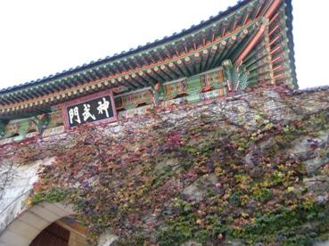 社員旅行 in Seoul_b0100062_11323390.jpg