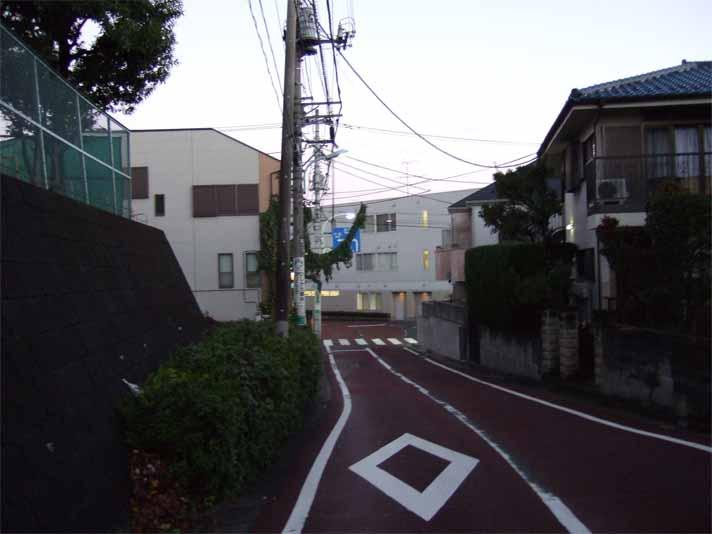 富士五湖&東山湖。_f0157505_1324975.jpg