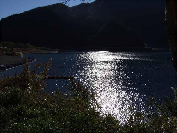富士五湖&東山湖。_f0157505_14532359.jpg