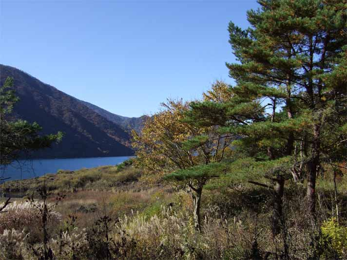 富士五湖&東山湖。_f0157505_14572059.jpg