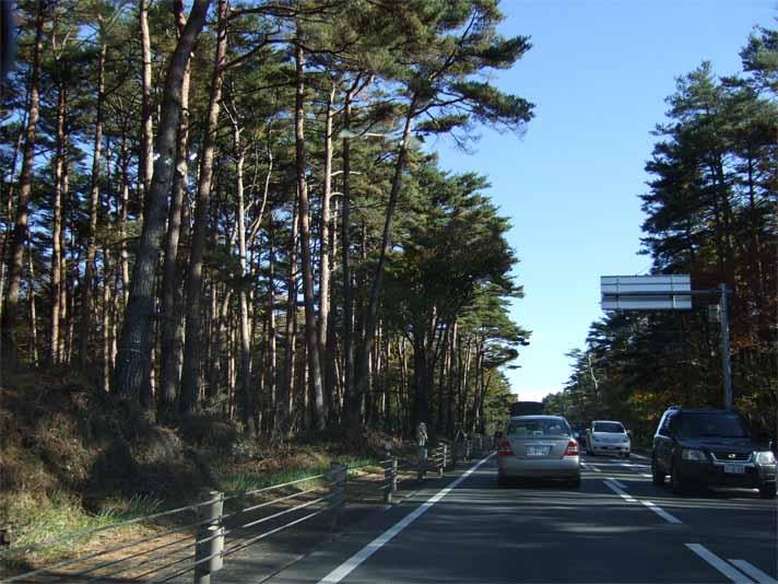 富士五湖&東山湖。_f0157505_1514188.jpg