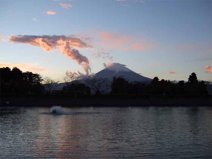 富士五湖&東山湖。_f0157505_15215825.jpg