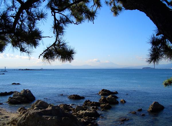 昼食後、海まで散歩_b0000608_1693041.jpg