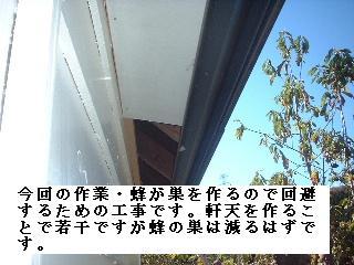 f0031037_18144899.jpg