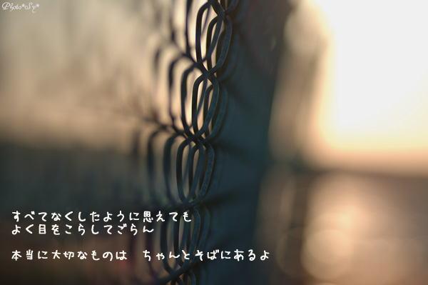c0144353_9455243.jpg