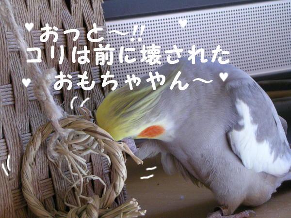 f0132055_2361836.jpg