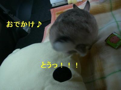 f0104057_205418100.jpg