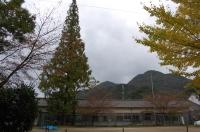 H19年「11月度大人の林間学校」_c0108460_20354042.jpg