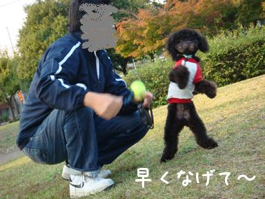 b0111376_121171.jpg