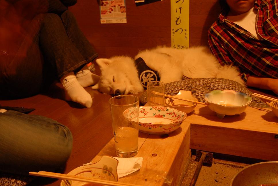オフ後の晩ご飯_a0049296_213513.jpg