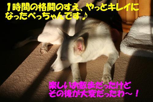 f0121712_23141329.jpg
