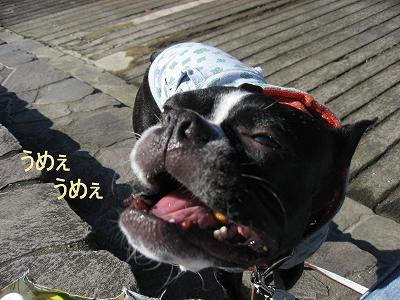 ぽかぽかホリデー_f0141516_2256469.jpg