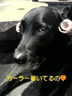 はぴば!!!_f0148927_19291067.jpg