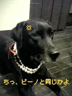 はぴば!!!_f0148927_1929459.jpg