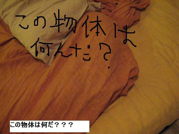 c0132537_11481423.jpg
