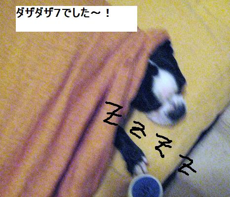 c0132537_1149126.jpg