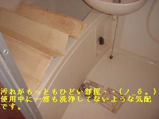 f0031037_18255551.jpg