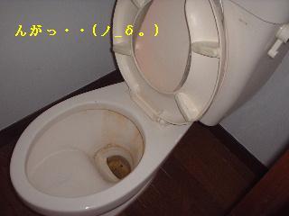 f0031037_18263131.jpg