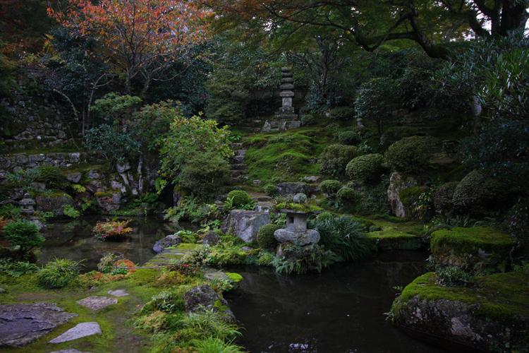 紅葉と桜が出逢う場所_e0051888_1784552.jpg