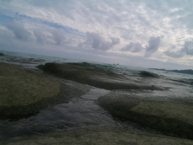 沖縄の風景 無事東京に戻りました_f0024992_1340729.jpg