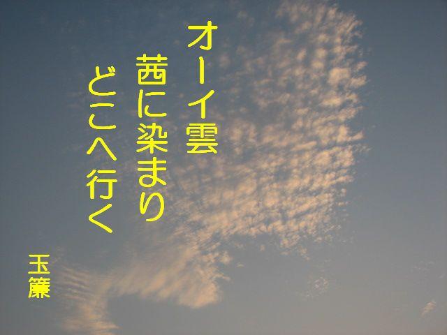 d0102505_1111599.jpg