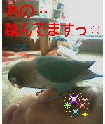 f0126418_16412562.jpg