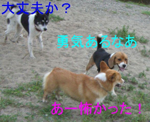 f0053952_15544361.jpg