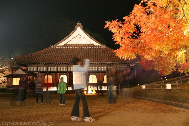 国宝 閑谷学校 紅葉ライトアップ #2_f0091955_2050142.jpg