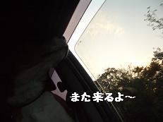 b0098660_1595753.jpg