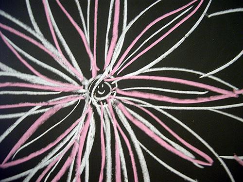 ドラムの花・まちの花・黒板の花_f0088873_0582148.jpg