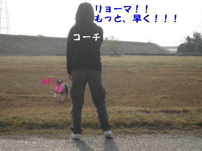 c0092787_16351634.jpg