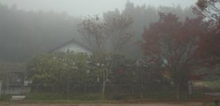 霧の朝_a0102098_22183271.jpg